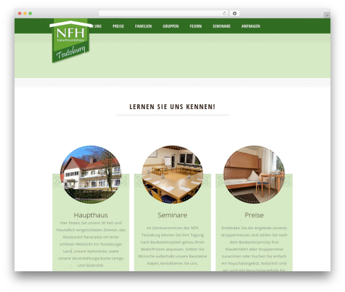 Dream Spa top WordPress theme - nfht.de