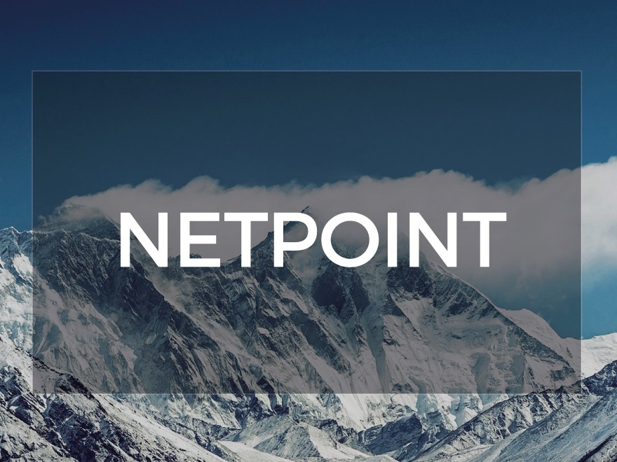 Netpoint template WordPress