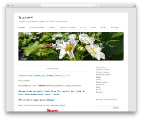 Twenty Twelve WordPress theme download - truskawki.net.pl