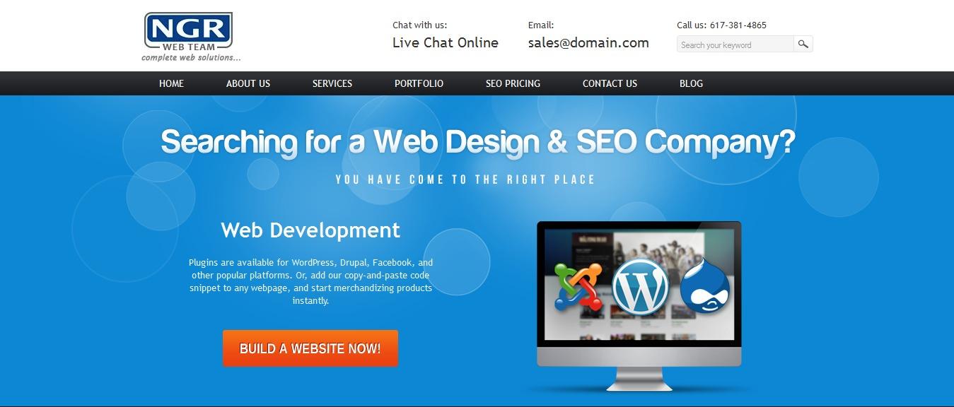 Ngr theme WordPress