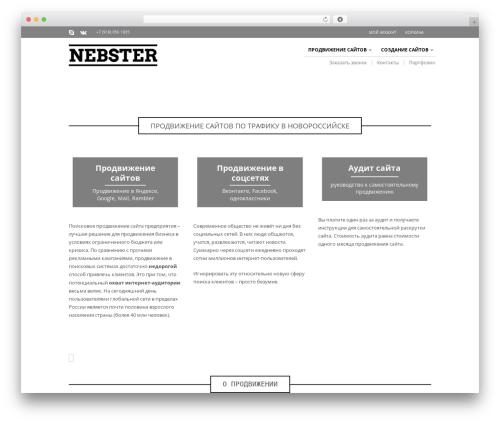 The Retailer WordPress theme - nebster.net