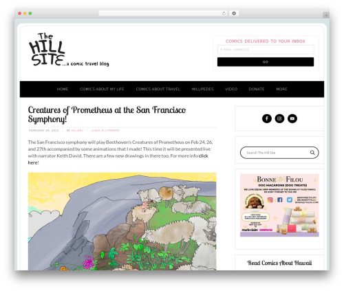 Free WordPress Follow us on widget plugin - thehillsite.com
