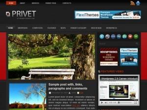 WordPress theme Privet