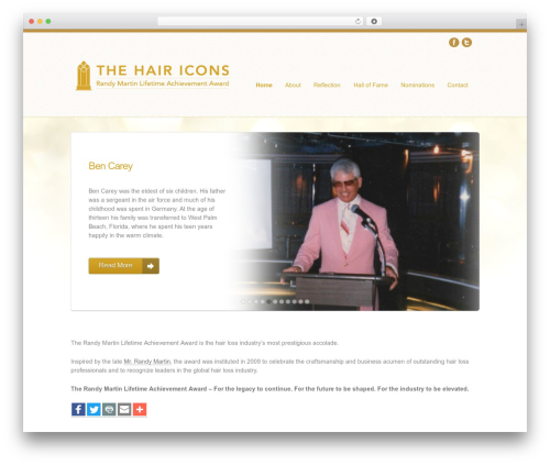 WP template Helios - thehairicons.com