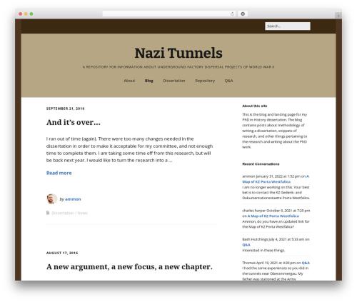 Make best WordPress theme - nazitunnels.org