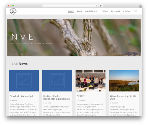 Wp Haswell best WordPress template - nve.ch