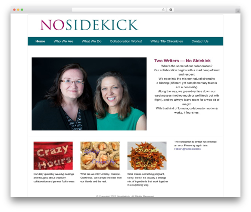Basic Simplicity WP template - nosidekick.com