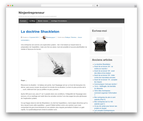 Free WordPress Retweet Anywhere plugin - ninjentrepreneur.com