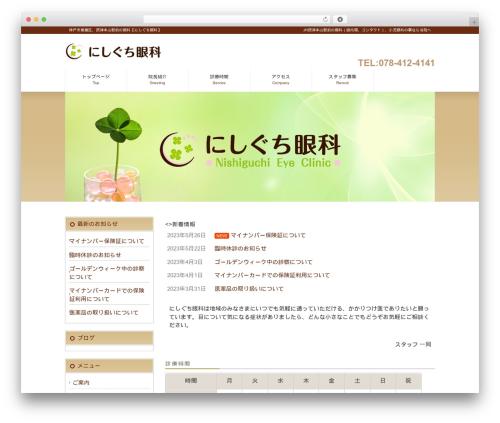 cloudtpl_107 top WordPress theme - nishiguchi-eye.com