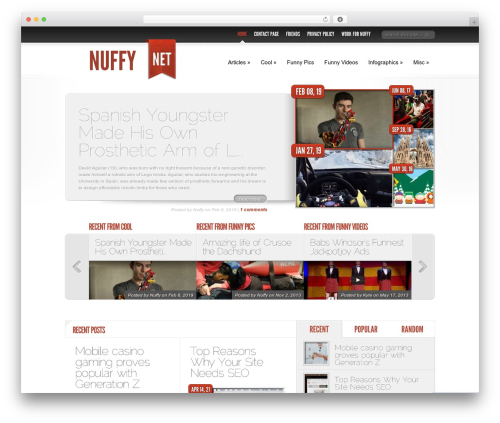 Delicate News best WordPress template - nuffy.net