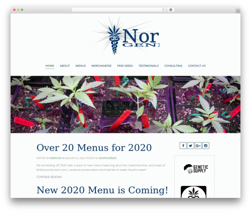WordPress theme Chester - norstargenetics.com