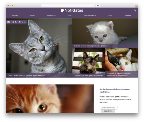WordPress responsive-lightbox-pro plugin - notigatos.es