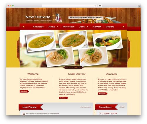 Bordeaux Premium Theme best restaurant WordPress theme - newthrivingonline.com