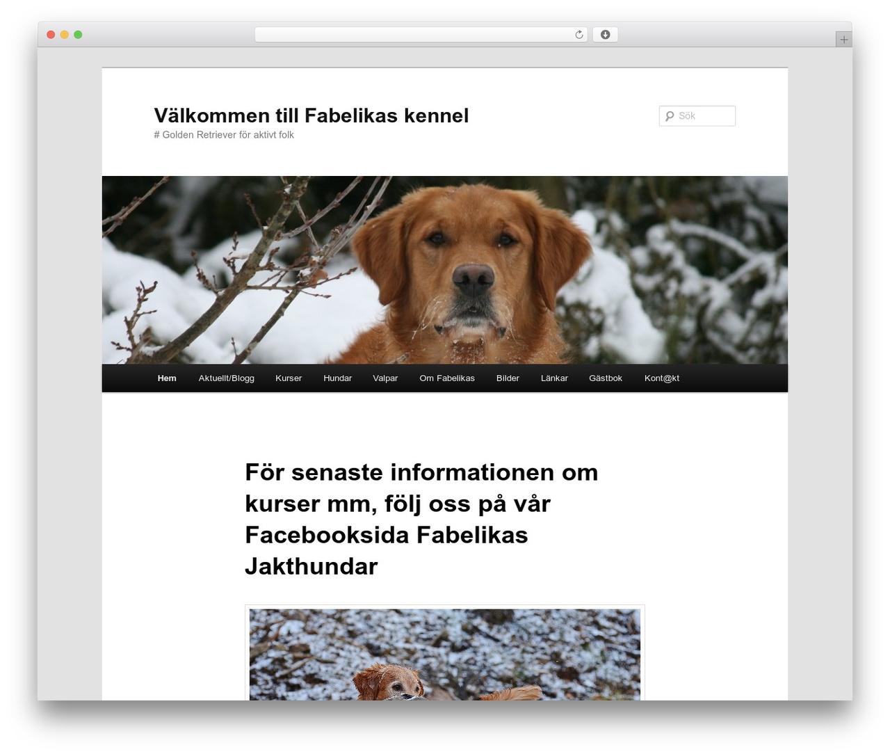 Twenty Eleven WordPress free download - new.fabelikas.se