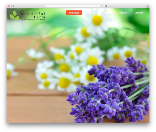Best WordPress theme Kodax - thewonderfulfarm.com