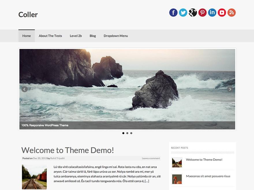 coller-child WordPress theme