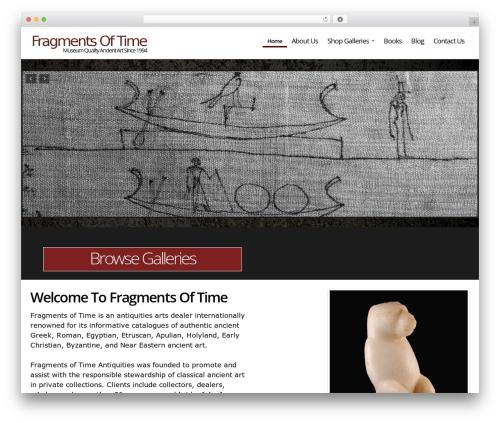 DMS WordPress website template - fragmentsoftime.com