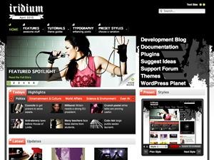 Iridium Wordpress Theme WordPress website template