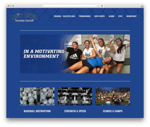 Bridge WordPress theme - nextleveltc.com