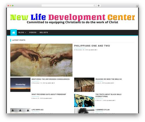 First Mag WordPress template free - newlifedevelopmentcenter.com