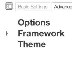 WP template Options Framework Theme