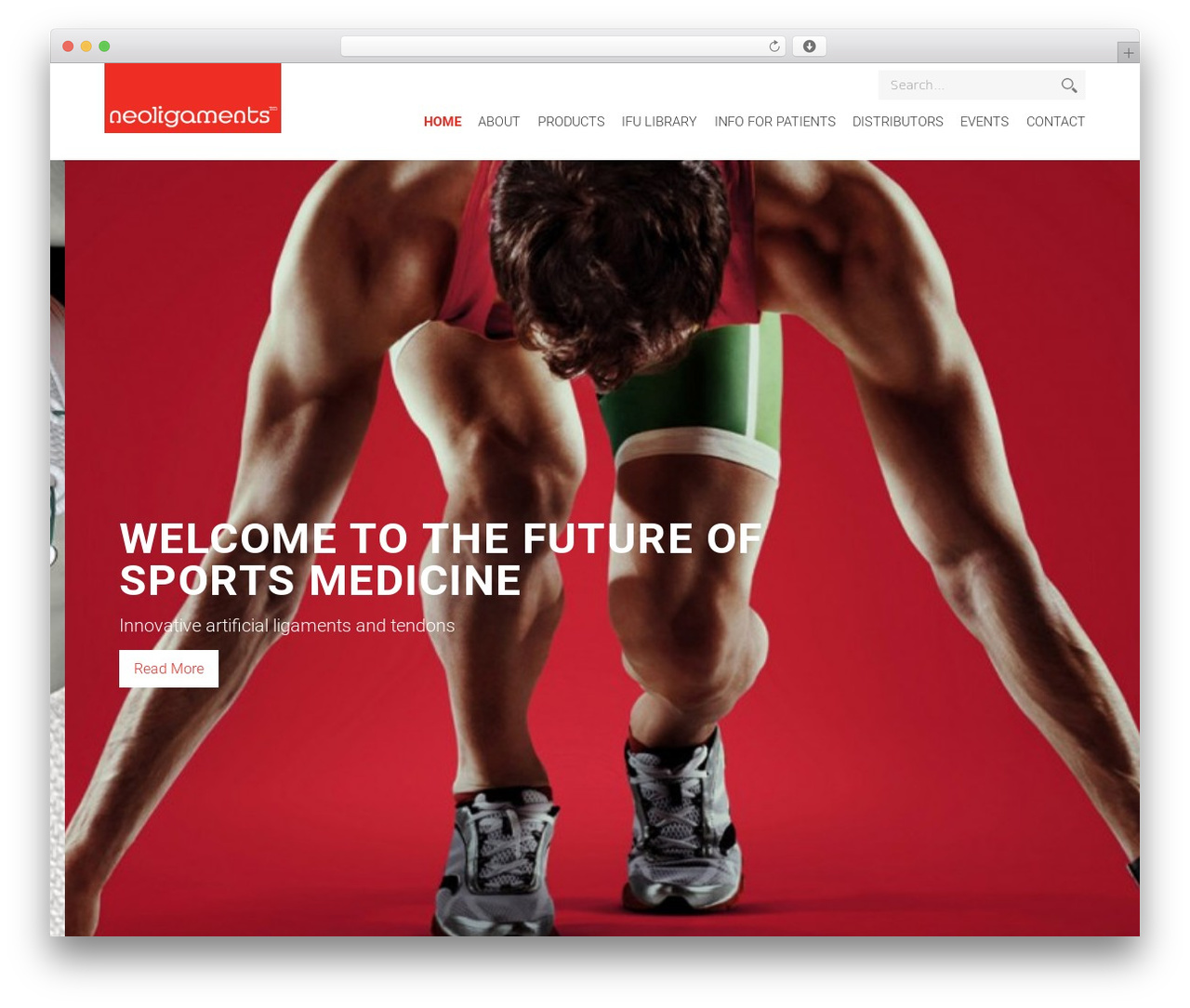 Neoligaments WordPress template - neoligaments.com