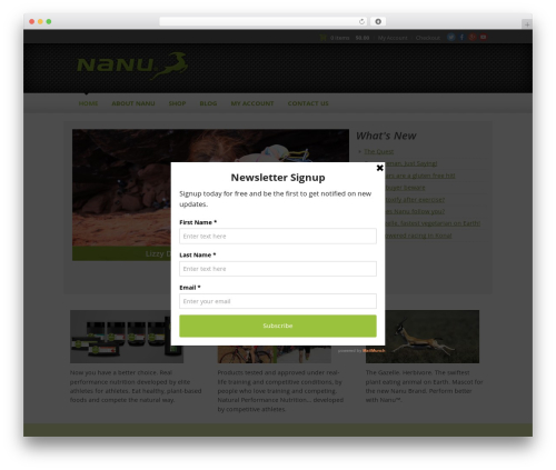 Theme WordPress theme - nanuperformance.com