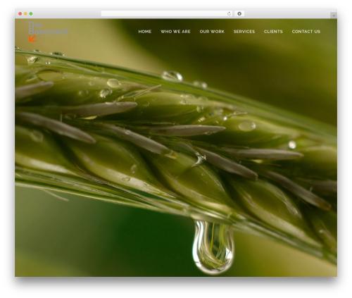 WordPress wpcopyprotectionsu plugin - thebasementmedia.com
