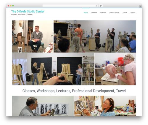 Businessweb Plus WordPress ecommerce theme - theokeefestudio.com
