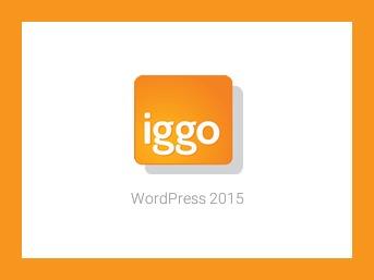 Iggo WP best WordPress template