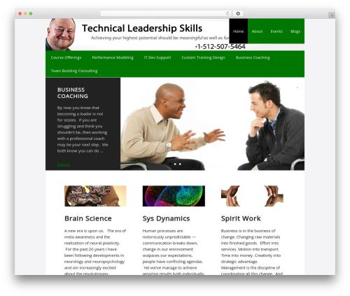 Theme WordPress Executive Child Theme - techleadershipskills.com