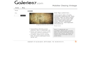 galerie87C WP template