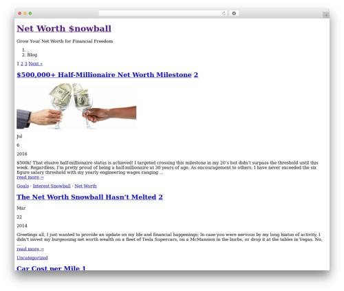 Montezuma template WordPress - networthsnowball.com