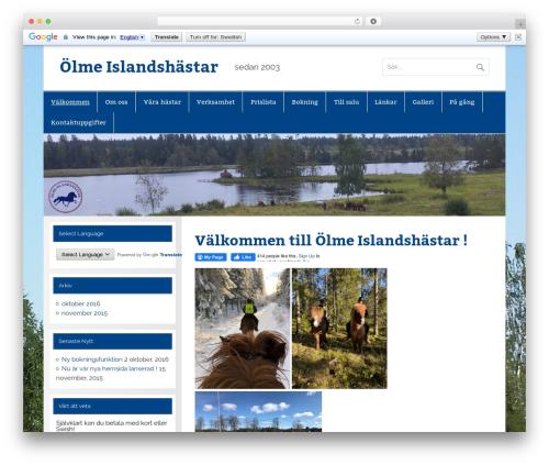 WordPress gallery-video plugin - olmeislandshastar.se