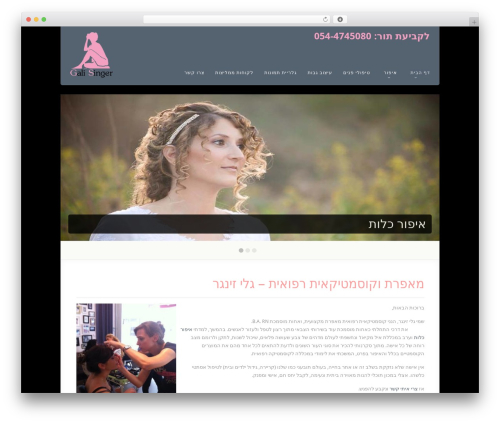 Theme WordPress Acoustic - galisinger.com