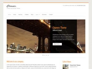 Cleanex personal blog WordPress theme