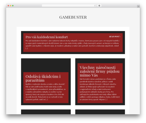 Theme WordPress Museum - gamebuster.cz