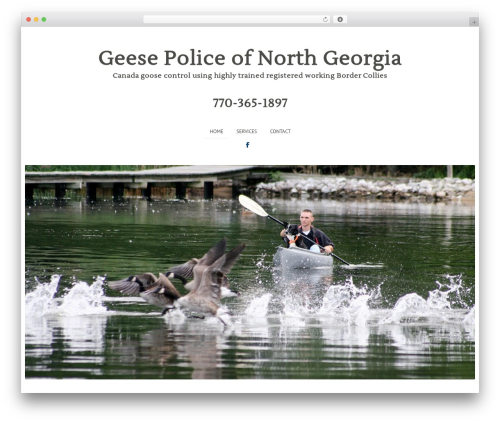 WordPress theme Gravit - geesepolicega.net