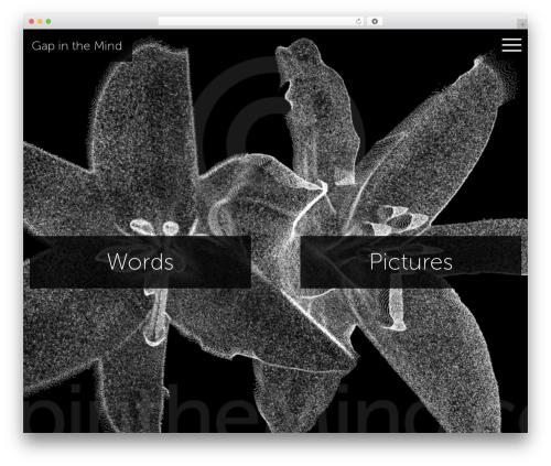 Free WordPress Image Watermark plugin - gapinthemind.com