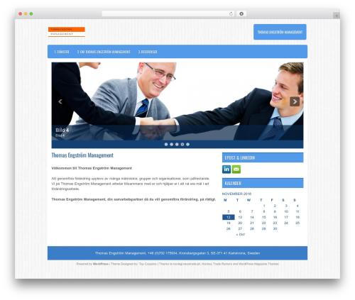 Apris WordPress website template - temanagement.se