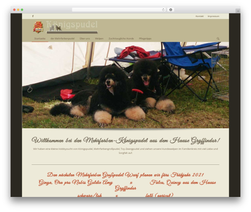 Theme WordPress Enfold - gryffindors-pudel.at