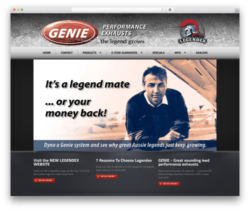 WordPress theme Radial Premium Theme - genieperformance.com.au