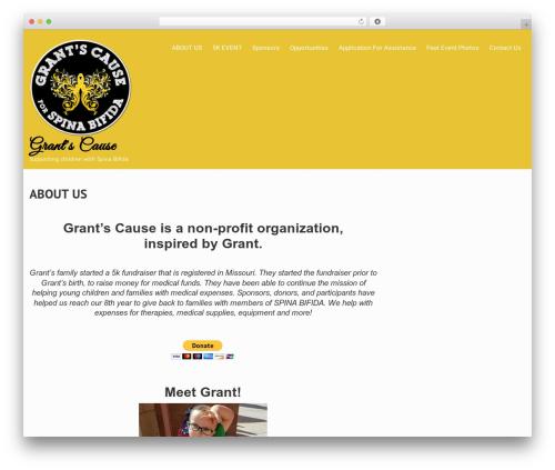 WordPress website template Truelove - grantscause.com