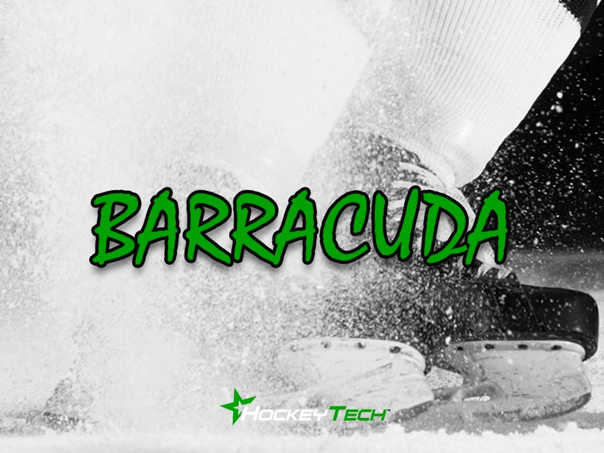 Best WordPress theme Barracuda