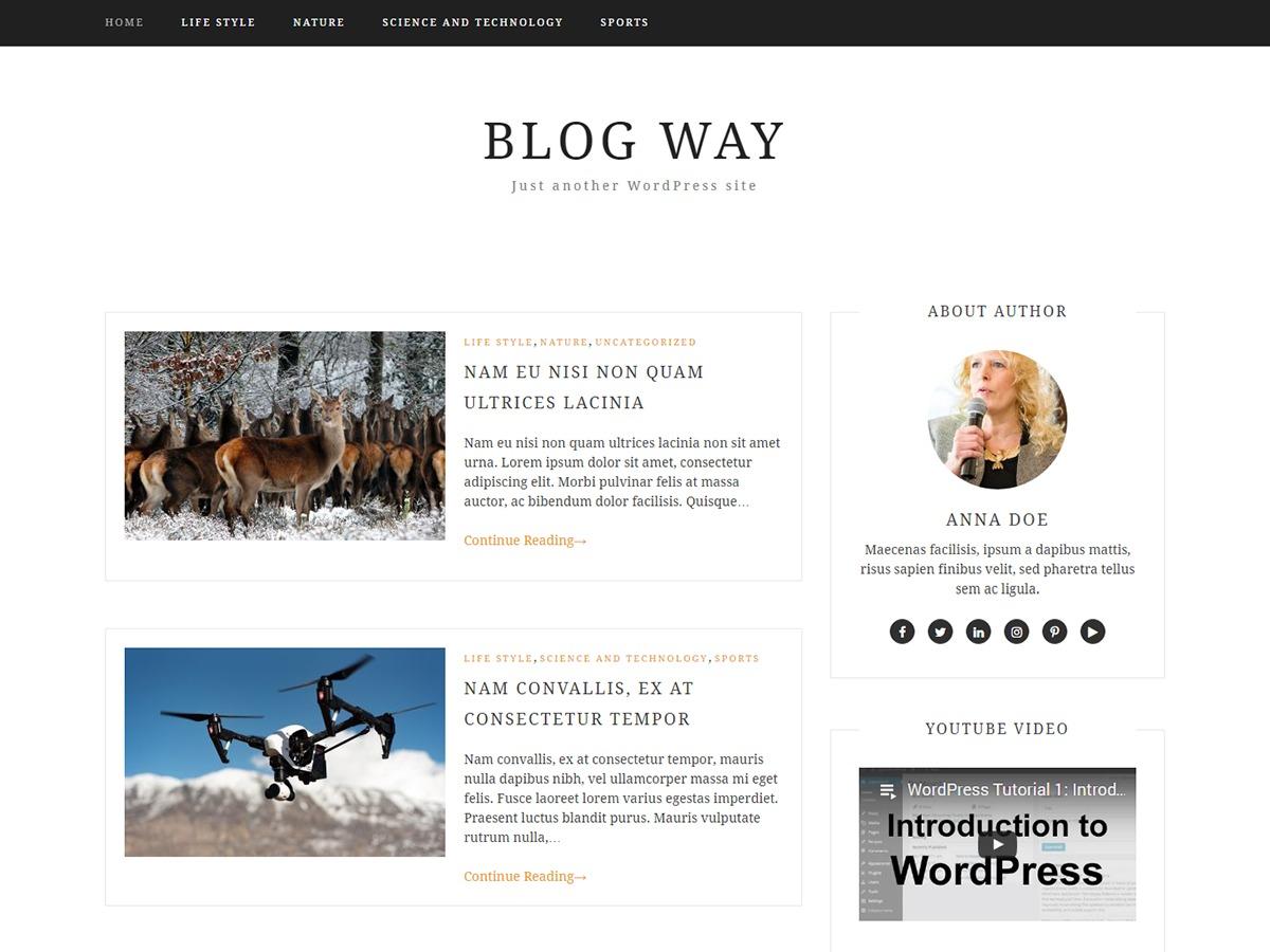 Blog Way Plus WordPress blog theme