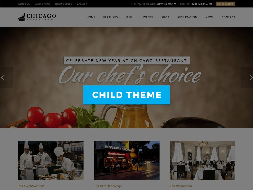 Chicago Child WordPress theme design
