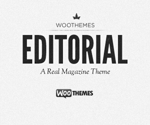 Editorial free website theme