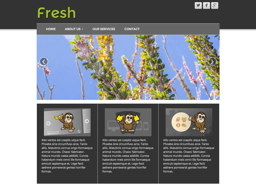 Fresh Lite theme WordPress free