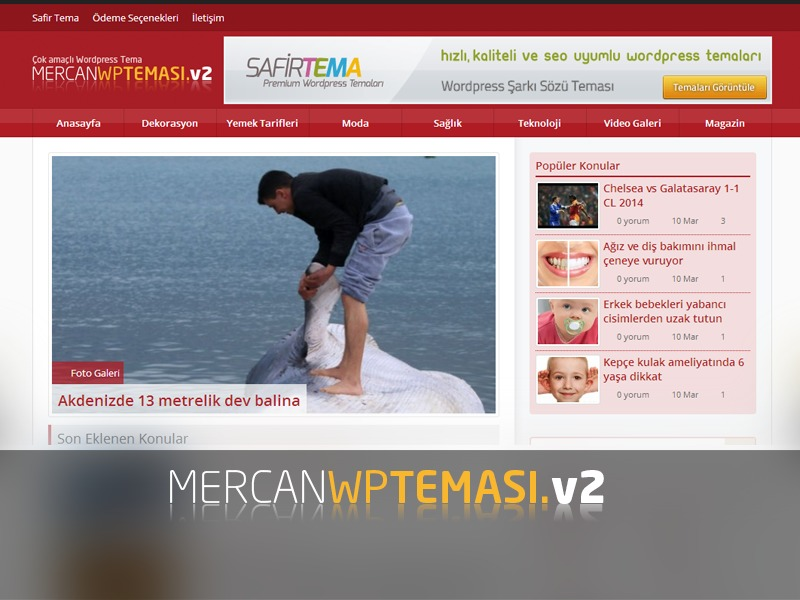 Mercan Wordpress Teması v2 WP template