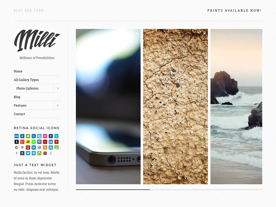 Milli WordPress theme image